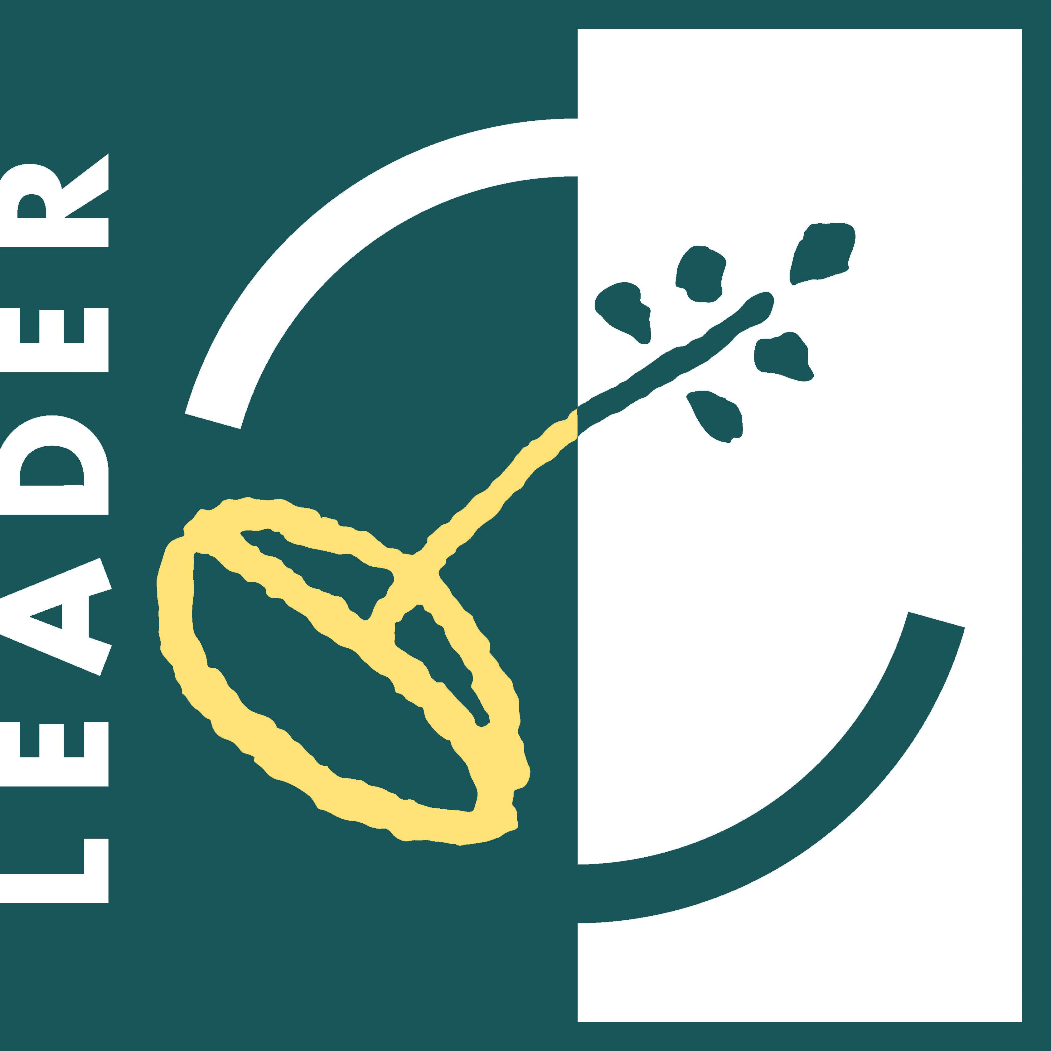 leader-eu-2007-2013-col-large